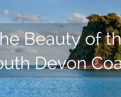 The Beauty of the South Devon Coast