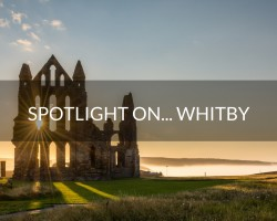 Spotlight on…Whitby