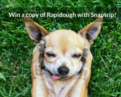 Win a copy of Rapidough with Snaptrip!