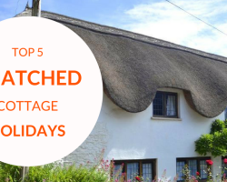 Top 5 Thatched Holiday Cottages