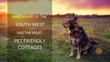 What part of the south west has the most pet friendly cottages